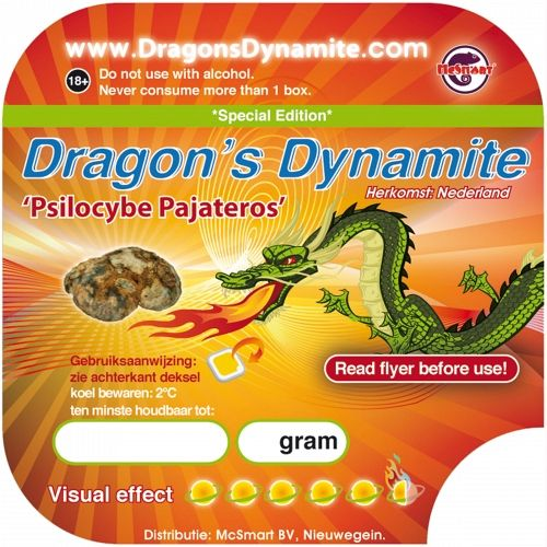 10055_dragon_sticker-500x500.jpg